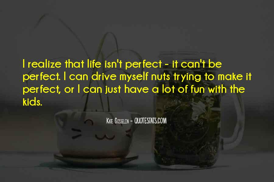 Life Can't Be Perfect Quotes #649912