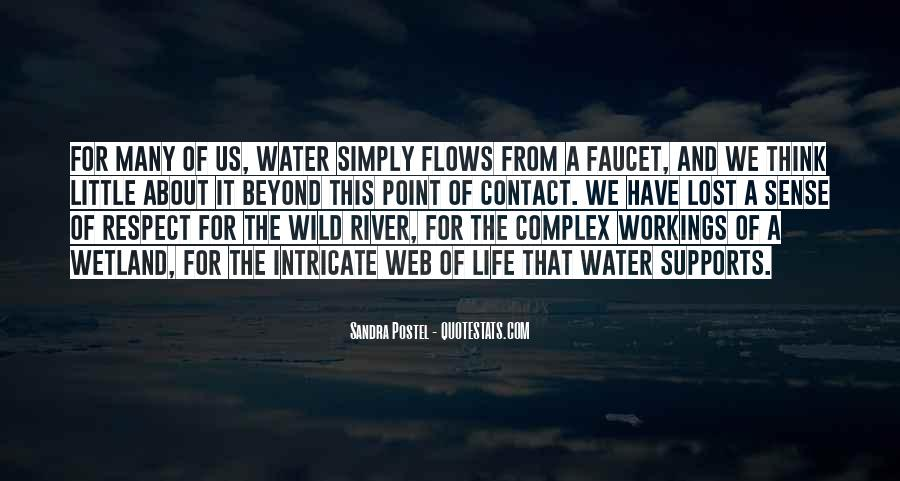 Life Flows Quotes #24600