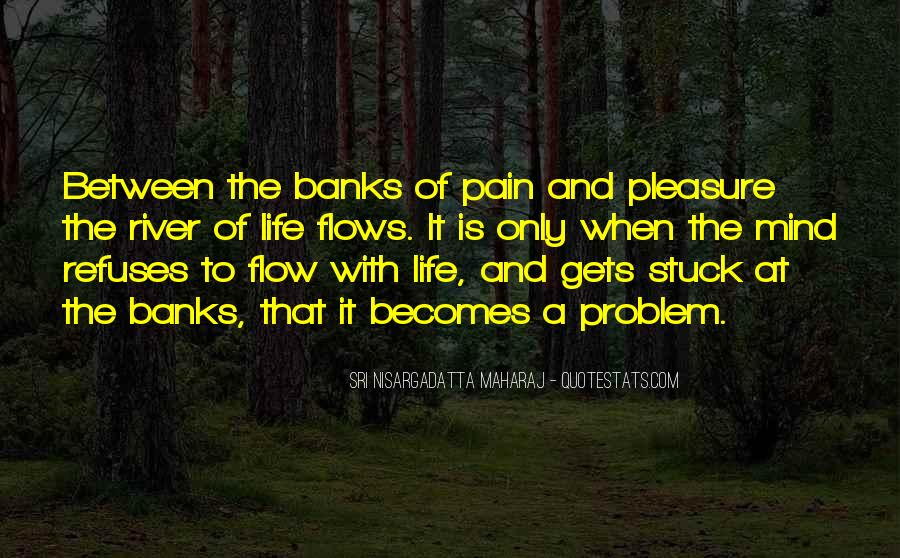 Life Flows Quotes #509165