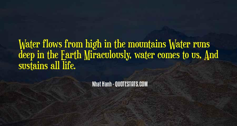 Life Flows Quotes #776437