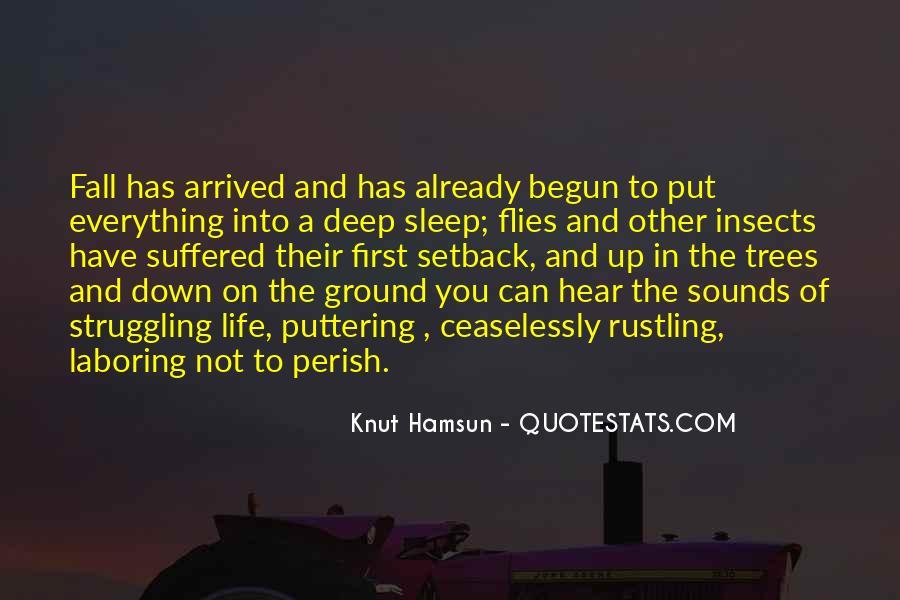 Life Has Begun Quotes #105948