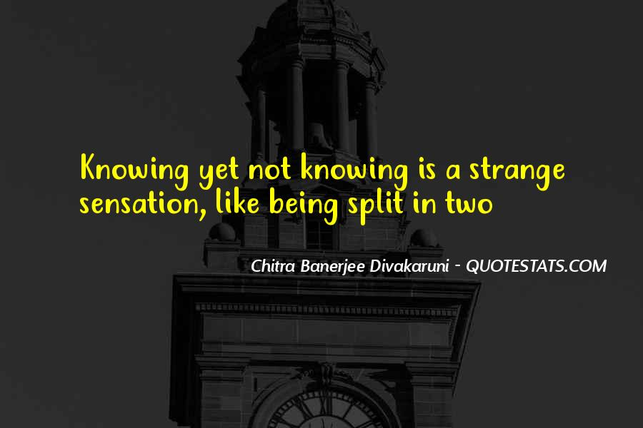 Quotes About Divakaruni #337789