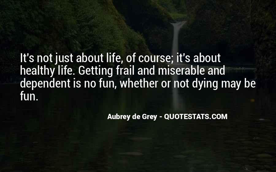 Life Is Not Fun Quotes #1393099