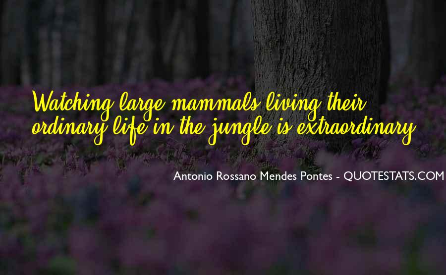 Life Less Ordinary Quotes #77813