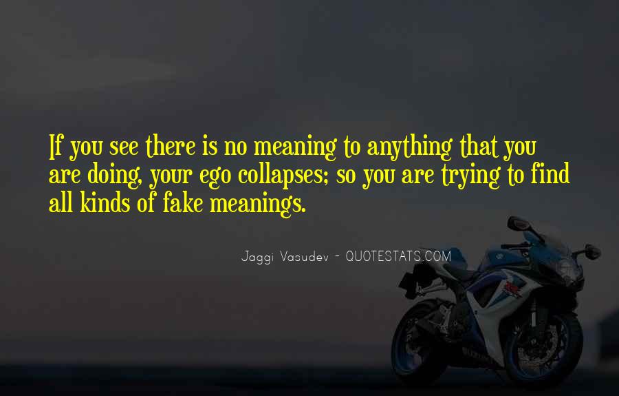 Life No Meaning Quotes #357482