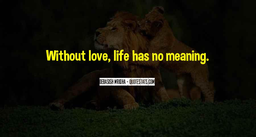 Life No Meaning Quotes #571100