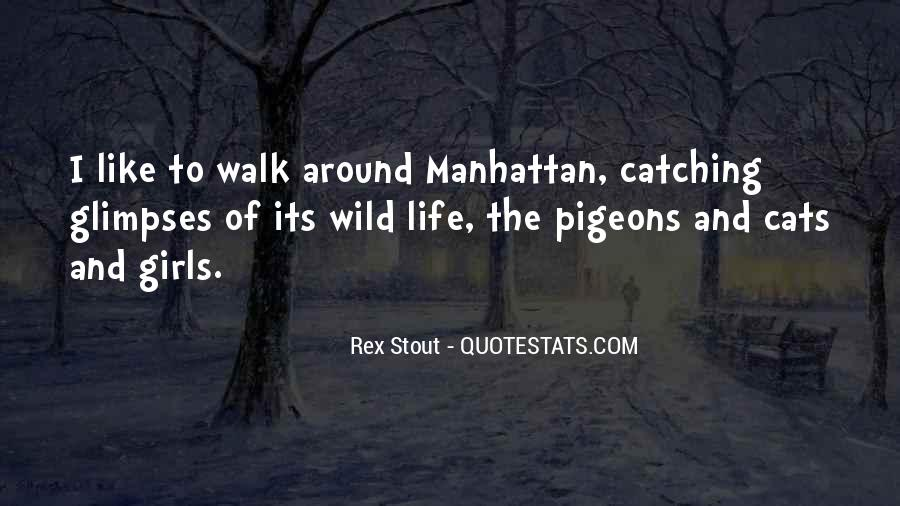 Life Pigeons Quotes #781807