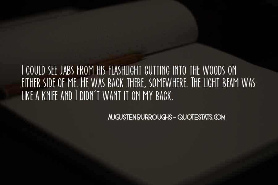 Light Beam Quotes #596008