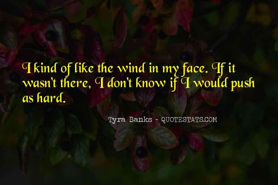 Like The Wind Quotes #117151