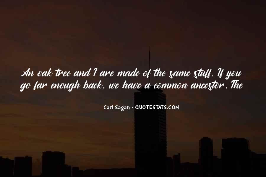Litcharts Huck Finn Quotes #735784