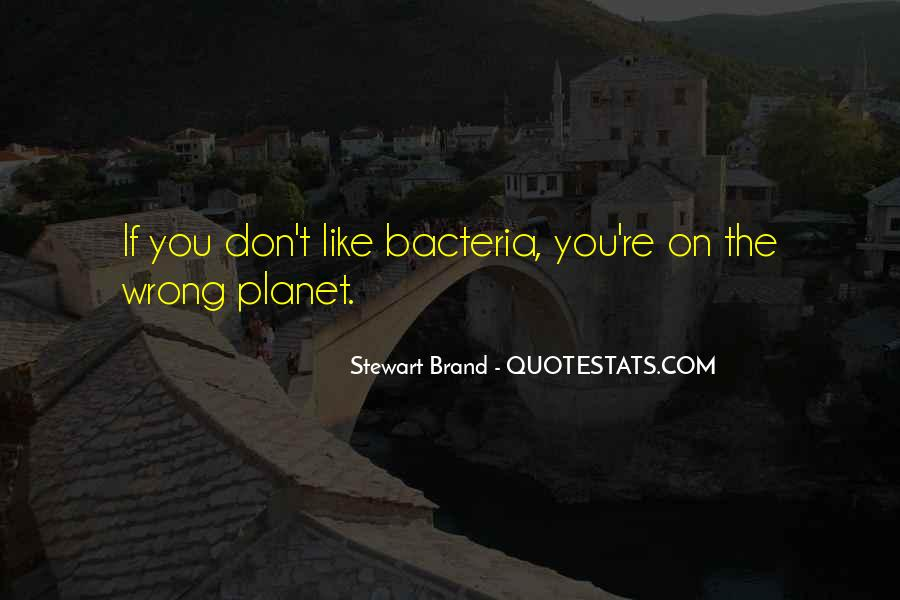Live World Stock Market Quotes #352065