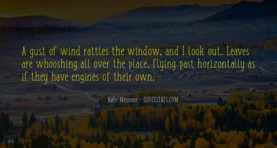 Look Out The Window Quotes #1115277