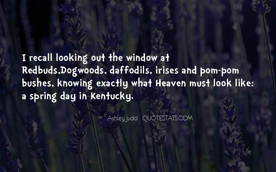 Look Out The Window Quotes #711274