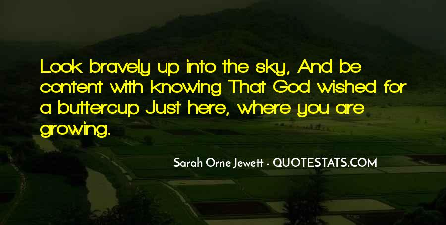 Look Up The Sky Quotes #171665