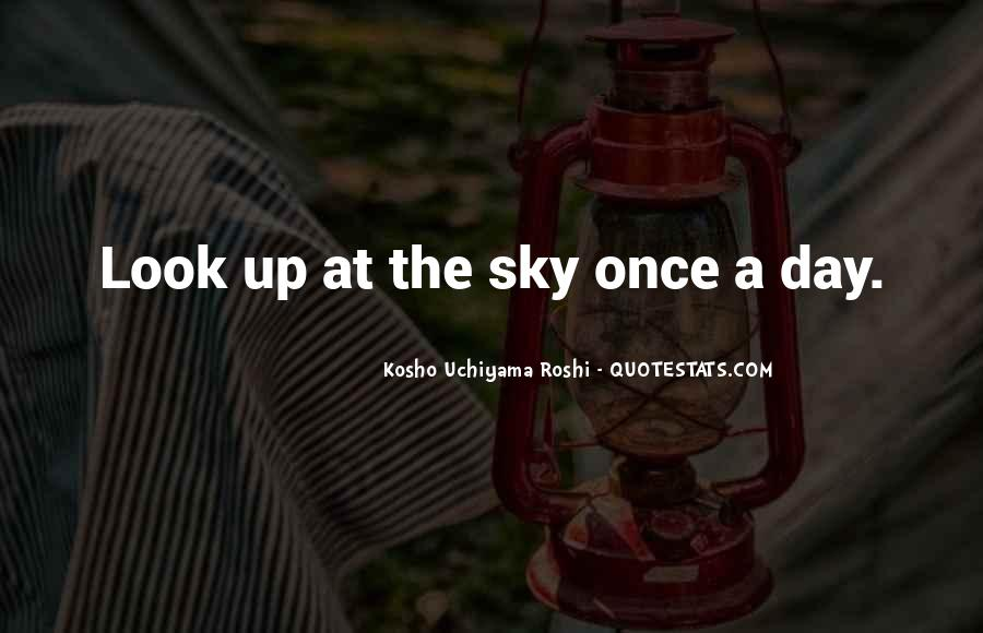 Look Up The Sky Quotes #275116