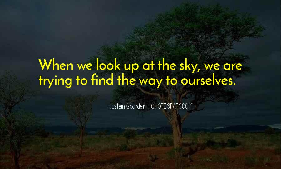 Look Up The Sky Quotes #465681