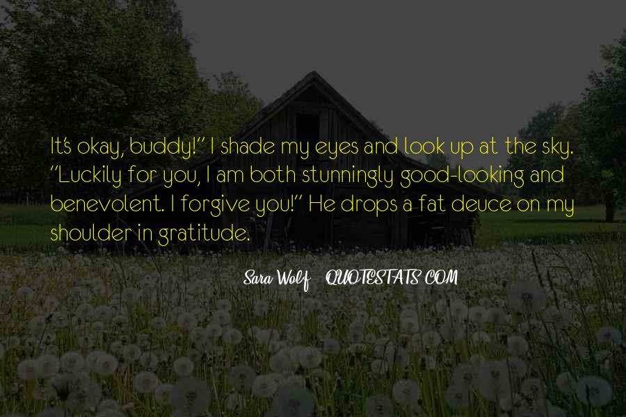 Look Up The Sky Quotes #590777