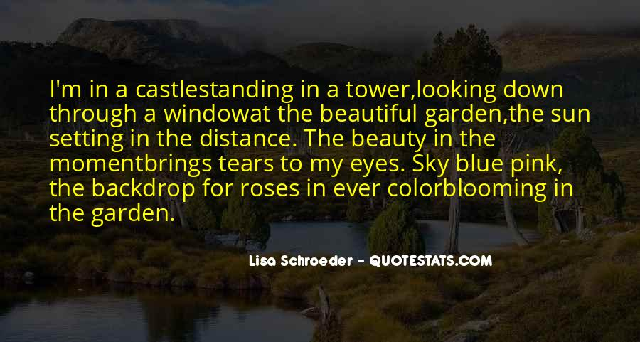 Looking For Beautiful Quotes #1601542