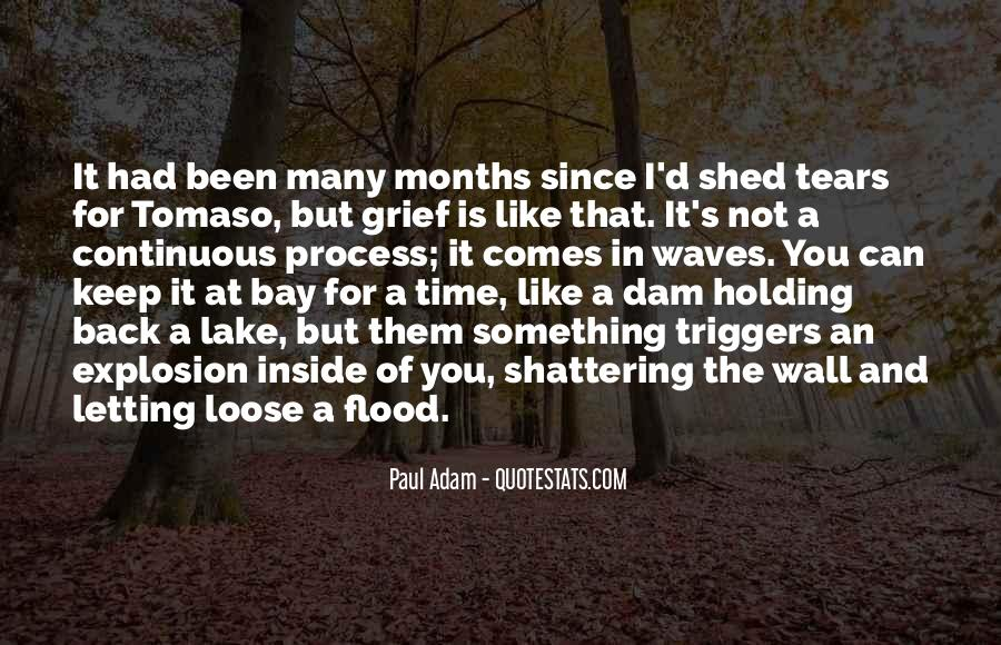 Quotes About Tears And Grief #1219999