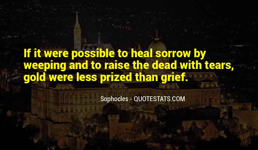 Quotes About Tears And Grief #599304