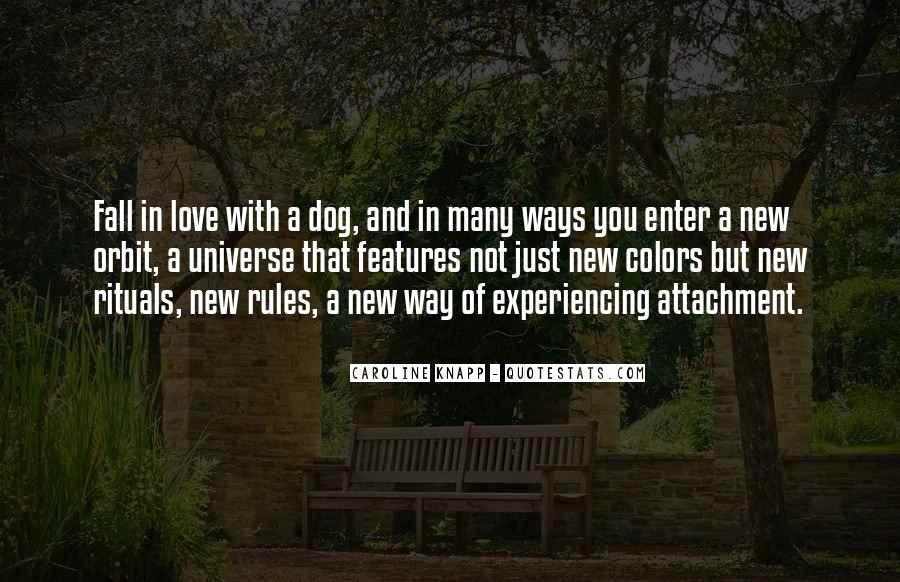 Love And Rules Quotes #260632