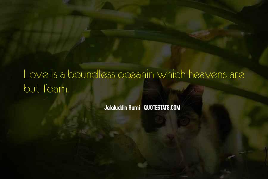 Love Boundless Quotes #337993