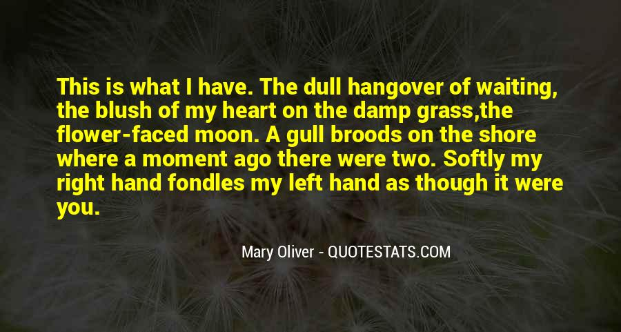 Love Comes Softly Quotes #21092