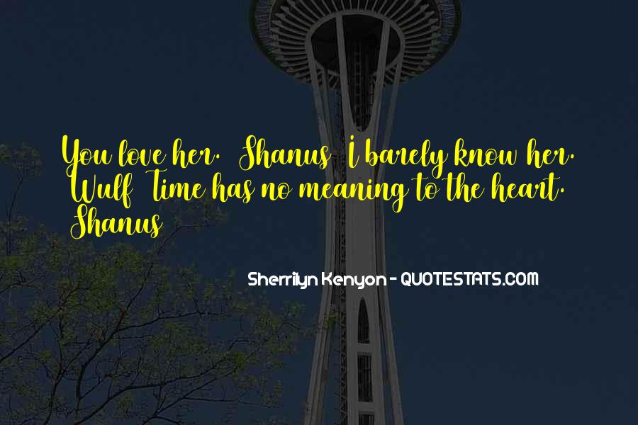 Love Has No Meaning Quotes #1269994