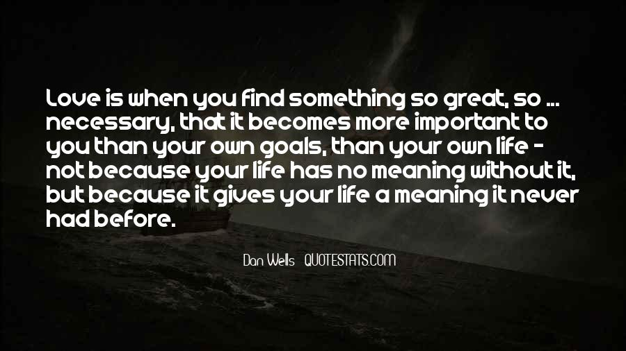 Love Has No Meaning Quotes #1353003