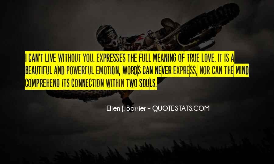 Love Has No Meaning Quotes #147734