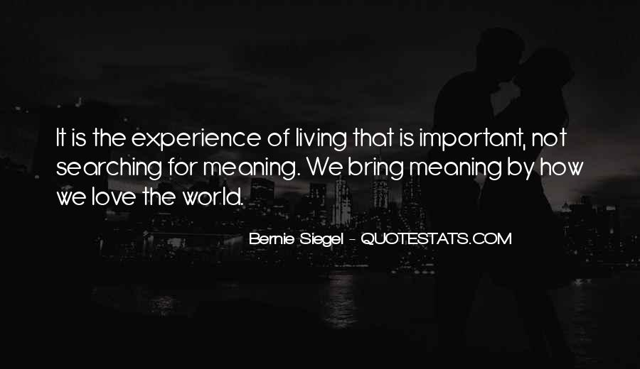 Love Has No Meaning Quotes #43315