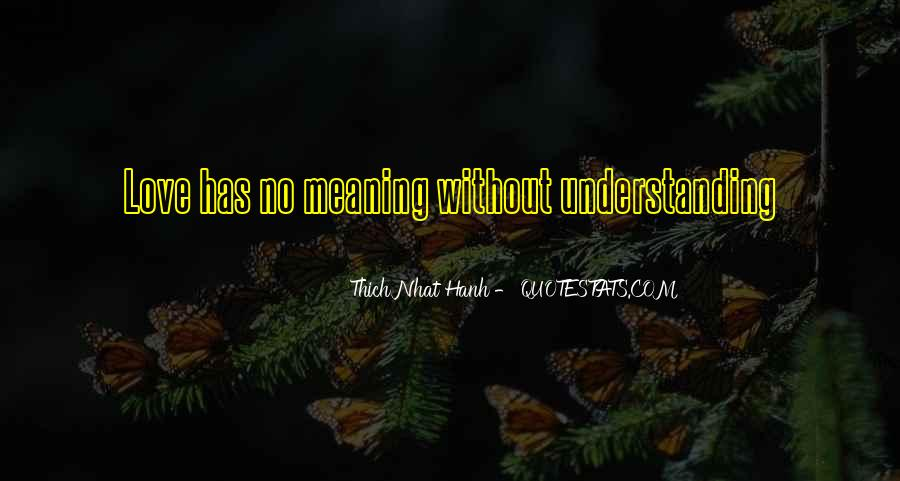 Love Has No Meaning Quotes #645568