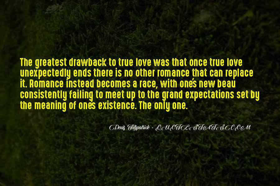 Love Has No Meaning Quotes #86456
