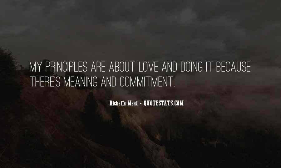 Love Has No Meaning Quotes #92101