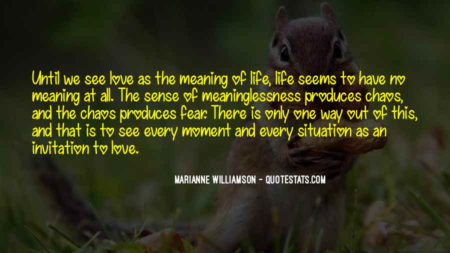 Love Has No Meaning Quotes #98896