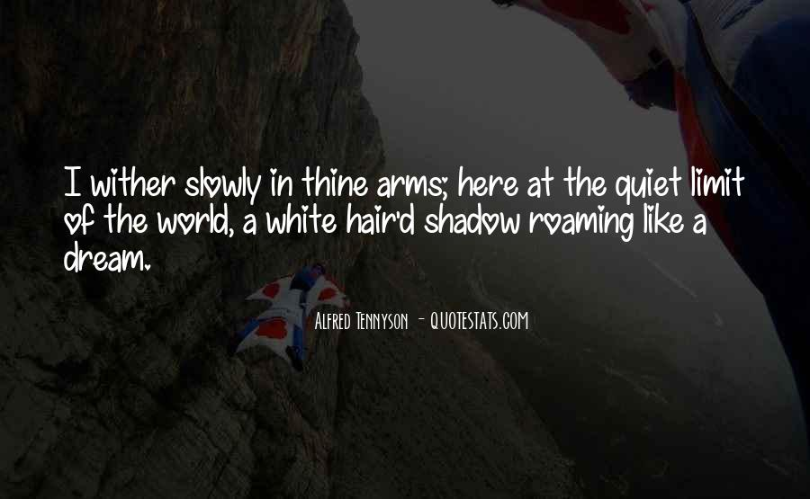 Love Is Like A Shadow Quotes #462799