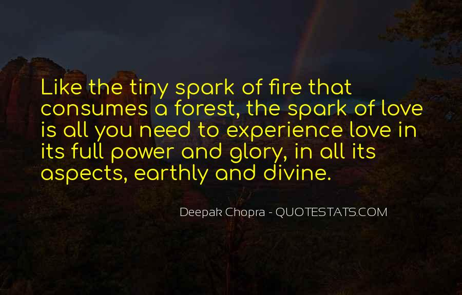 Love Like A Fire Quotes #1339736