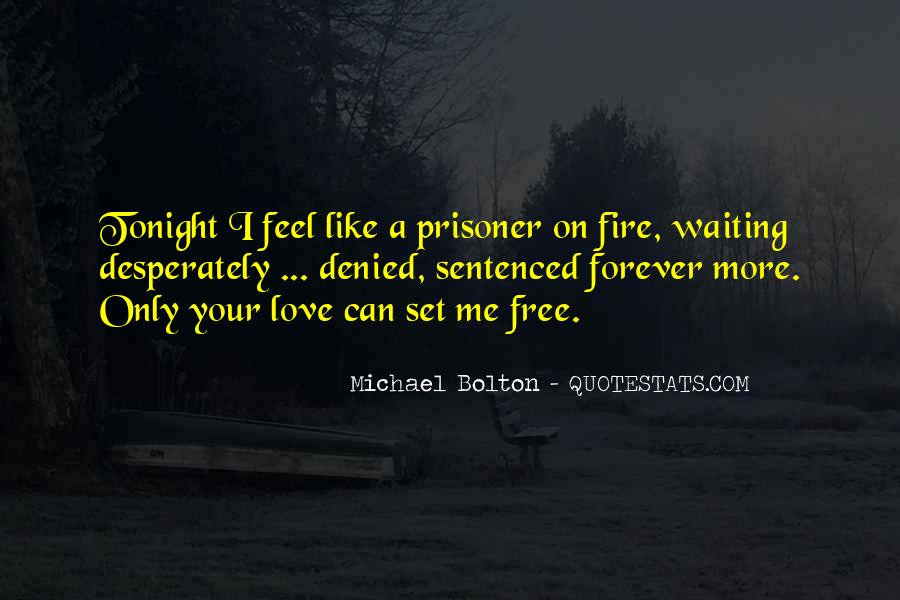 Love Like A Fire Quotes #1700296