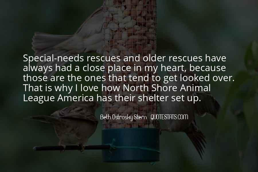 Love Shelter Quotes #109241