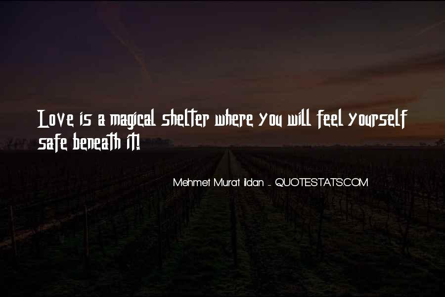 Love Shelter Quotes #1182163