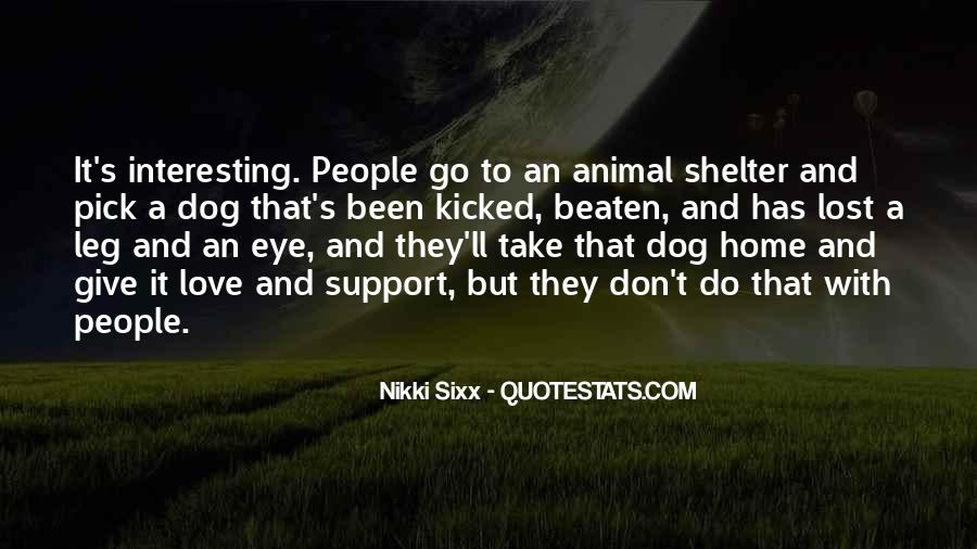 Love Shelter Quotes #1768191