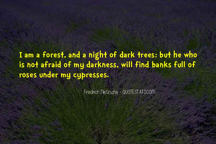 Quotes About Darkness And Night #441634