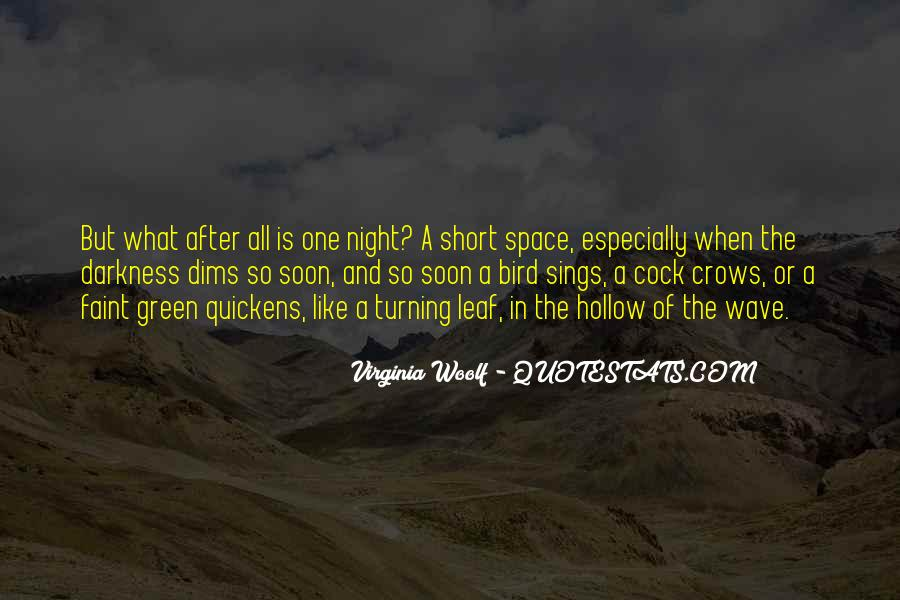Quotes About Darkness And Night #516192