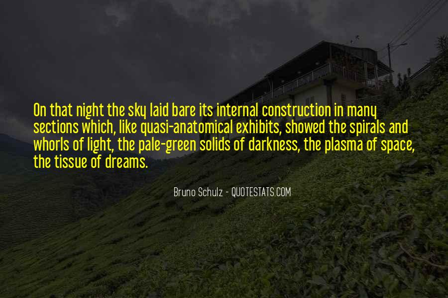 Quotes About Darkness And Night #517770