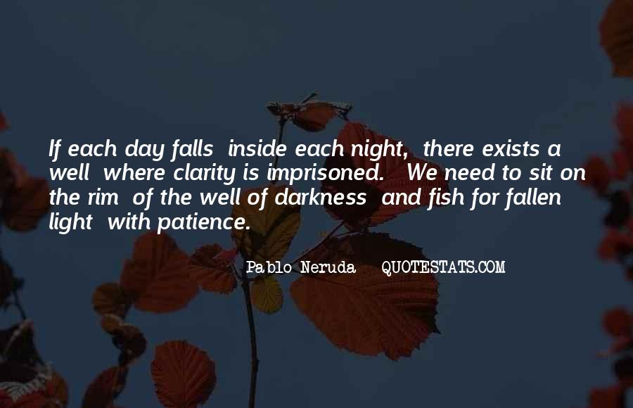 Quotes About Darkness And Night #539957