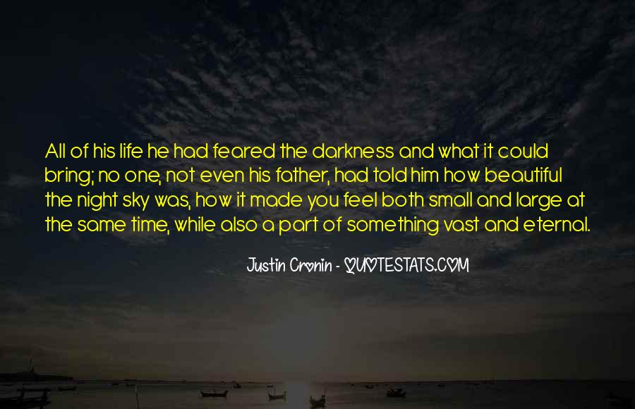 Quotes About Darkness And Night #562012
