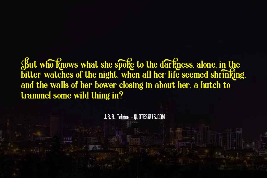 Quotes About Darkness And Night #621520