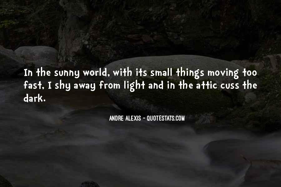 Quotes About Dark Vs Light #35044