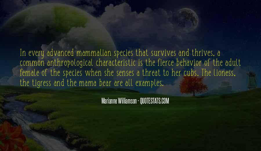 Mama Bear Quotes #1602679