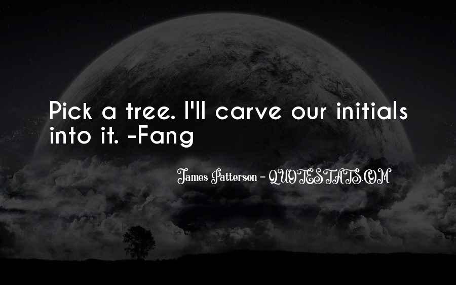 Maximum Ride Fang Quotes #209076